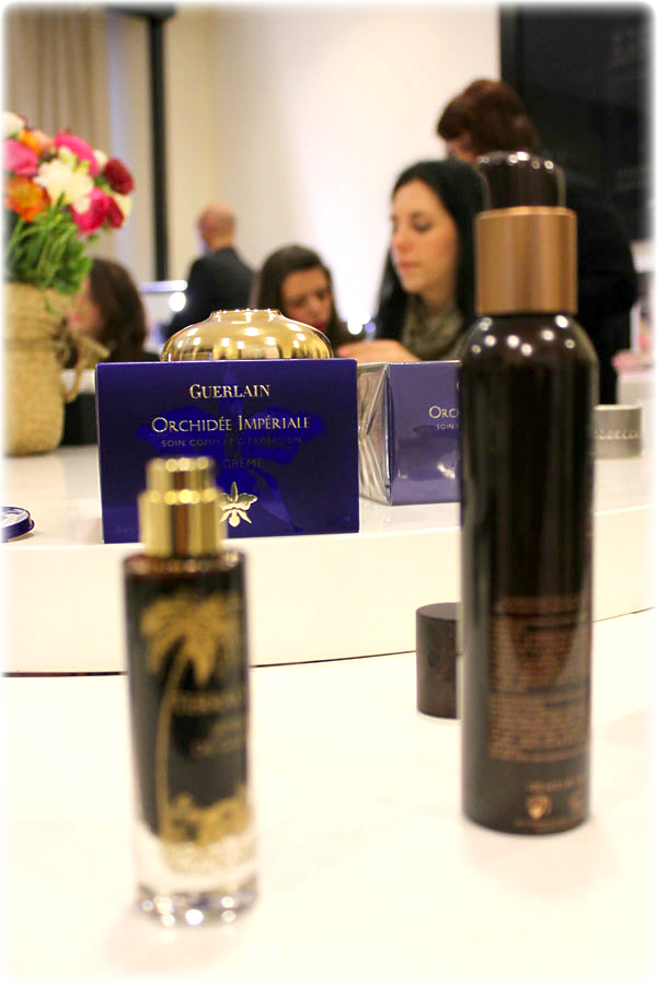 Orchidée Impériale & Terracotta Sunless