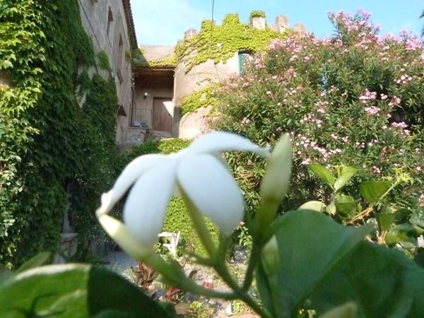 torre sant'antonio, santa caterina dello ionio, 2 fashion sisters, travel, blog tour